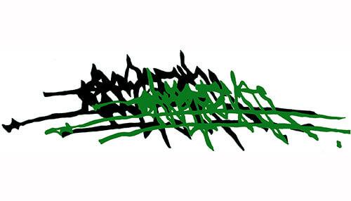 Firma Osho