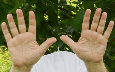 Differenza tra le mani