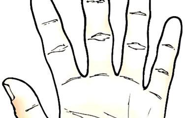 Leggere la mano: dita nodose e dita lisce – ordine e intuizione
