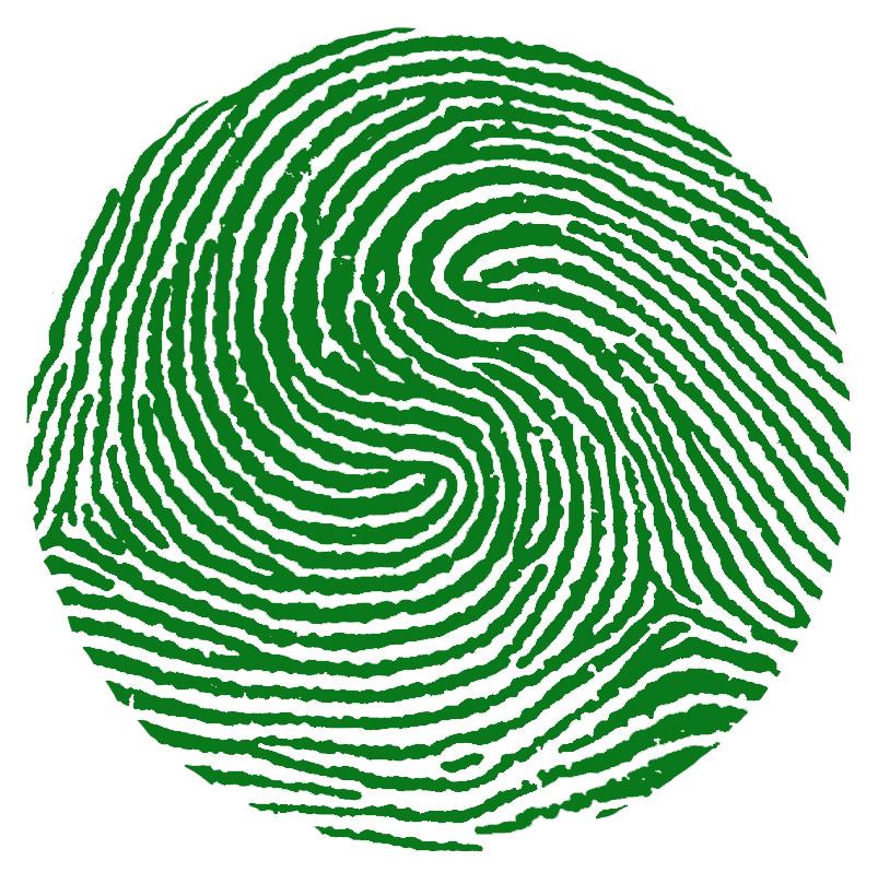 impronta a spirale composita