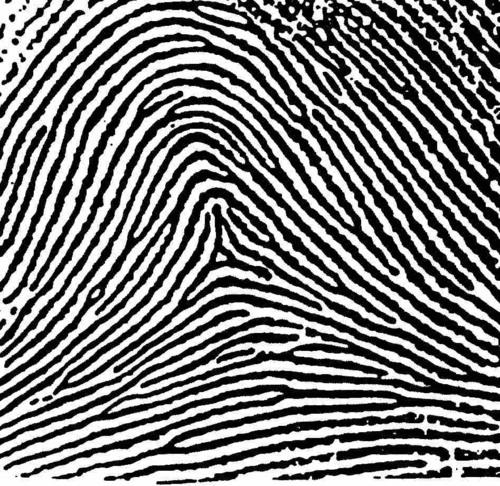 IMPRONTE DIGITALI e DNA SPIRITUALE – Impronta ad ARCO-TENDA